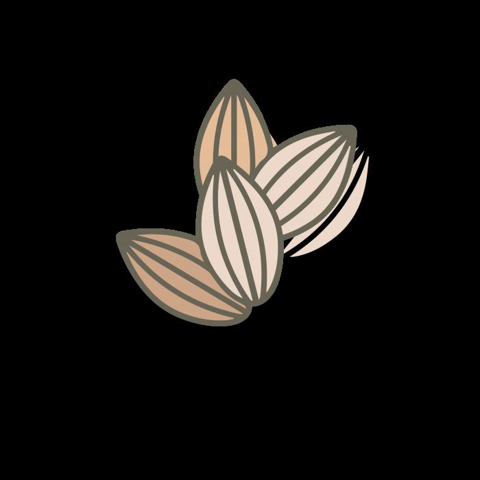 web frutos secos 6.7.21-08